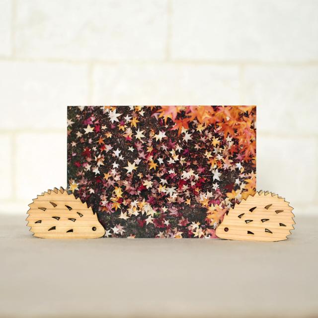 ハリネズミの木製メモ&フォトスタンドクリップ2個セット